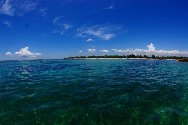パパスダイブセンターで行くバリ島スクーバダイビング サヌールエリア (体験ダイビング/ファンダイビング)