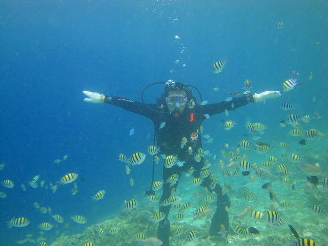 セブ島の海でダイビングを始めよう!PADIオープンウォーターコース2日間