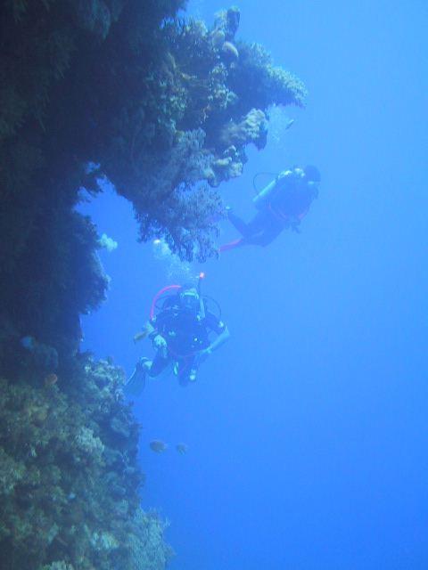 グアムの海でダイビング!