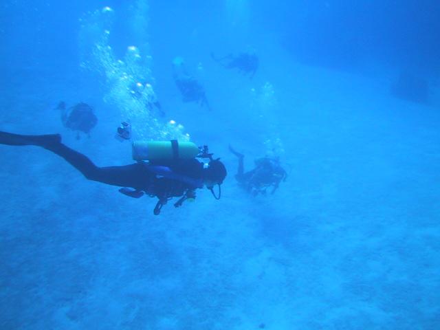 時間がない方におススメ!グアムの海で短時間ダイビング!