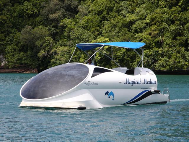 パラオの海中世界をのぞいてみよう!グラスボトムボート半日ツアー