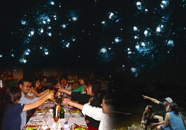 キュランダ&土ボタルと夜行性動物探検ツアー(エコツーリズムオーストラリア認定ツアー!)
