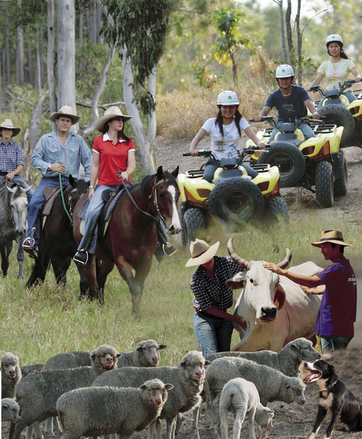 ケアンズのジャングルで乗馬と4輪バギー