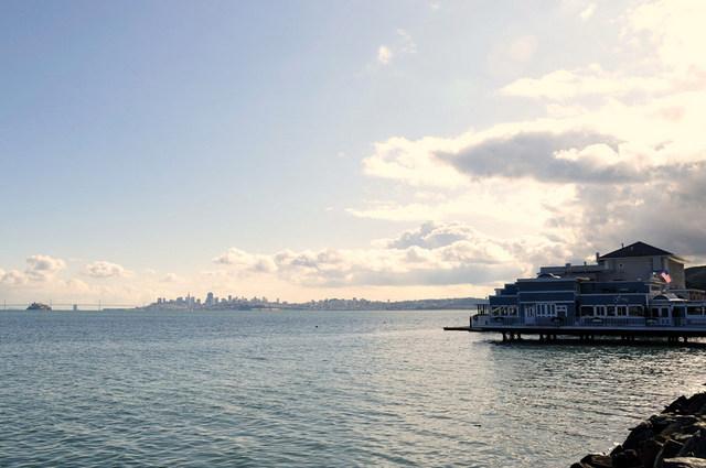 サンフランシスコ発 ミューア ウッズ国定公園&サウサリート片道フェリー乗船券付き(サウサリート発Pier 41)