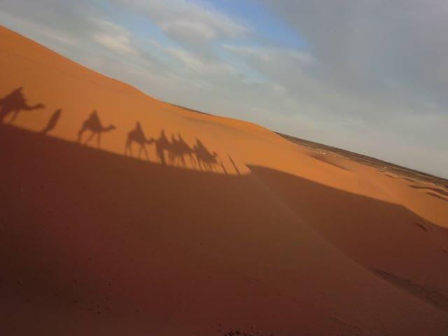 マラケシュ発 サハラ砂漠2泊3日 テント宿泊 キャメルライド付き