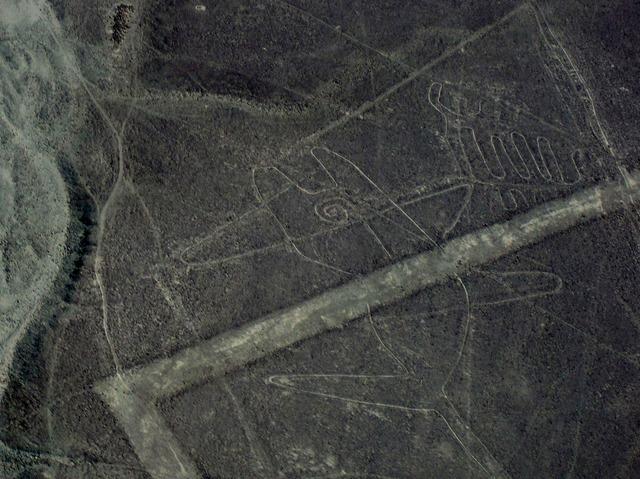 ナスカの地上絵遊覧飛行 イカ-ナスカ クラシック [イカ空港発 / 約1時間15分]