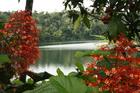 パワースポットのバリン湖(バリーン湖)
