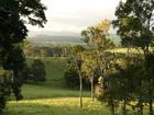 緑に癒される高原の風景