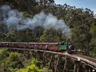 列車から美しい山々の景色をお楽しみください