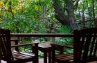 バルコニーで豊かな熱帯雨林の森林浴を!