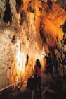 ワイトモ洞窟の鍾乳洞