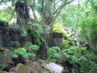 ジャングルにうかぶ真の遺跡 ベン・メリア