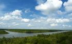 アジア最大級、ベトナムのマングローブ林を満喫!