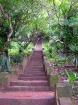 プーシーの丘の頂上までは300段以上の階段を上ります