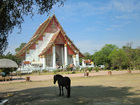 タイの遺跡 ウィハーン・プラ・モンコン・ボーピット