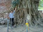 ガイドさんと比べて、とてもおおきな樹であるのがわかる