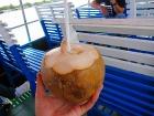 船に乗ったら新鮮なココナツが登場