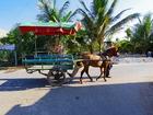 馬車に乗りベンチェー村観光