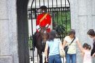 王宮を守る衛兵