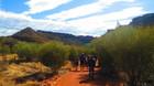 渓谷の谷を散策する約1時間のクリークウォークも選べます