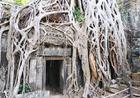発見された当時の姿のまま残るタプローム寺院