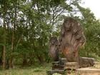 ベンメリア遺跡はラピュタのモデルになったと言われている