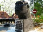 サンギランはジャワ原人の頭蓋骨が発見された町