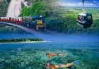 グリーン島とキュランダ二つの世界遺産