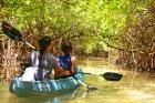 カヤックでしか通れないマングローブの水路を進む