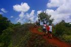 パラオの自然の中をのんびり歩こう