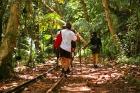 山の尾根を歩き沢を渡るトレッキング
