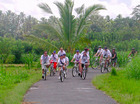 自然の中をサイクリング