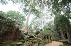 「森の寺院」タプローム