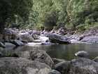 緑豊かな渓谷でリフレッシュ森林浴