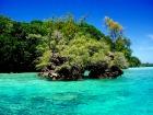 濃い緑と青が美しいパラオの海と無人島