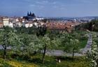 プラハの街並みとプラハ城が見える絶景