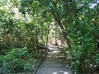 グリーン島内の遊歩道を散策