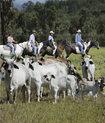 自然の中での乗馬は最高!