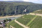 世界遺産ライン渓谷の川下り