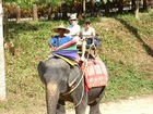 象のり体験