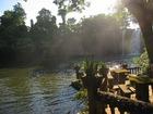 湖周りの柵や鉢もパロネラの作品の一部