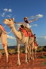 砂漠とラクダとエアーズロック、夢のコラボです!