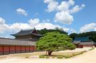 伝統的な韓流家屋を見学