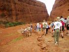オルガ岩群ではウォルパ渓谷の散策道を散策
