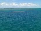 一面に広がる青い海