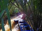 手漕ぎボートでメコン川をジャングルクルーズ