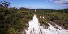 4WD車に乗り込み、砂浜と自然の中を駆け抜ける!