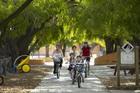 小さなロットネスト島は自転車でも回れます
