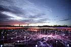 約5万球以上の電球が織り成すイルミネーションショー