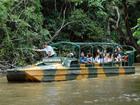水陸両用車でジャングル探検